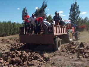 lavoro-kenya