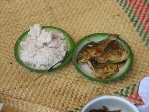 cibo-malgascio